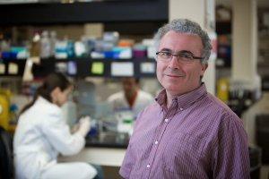 Lionel Berthoux, professeur au Département de biologie médicale de l'UQTR.