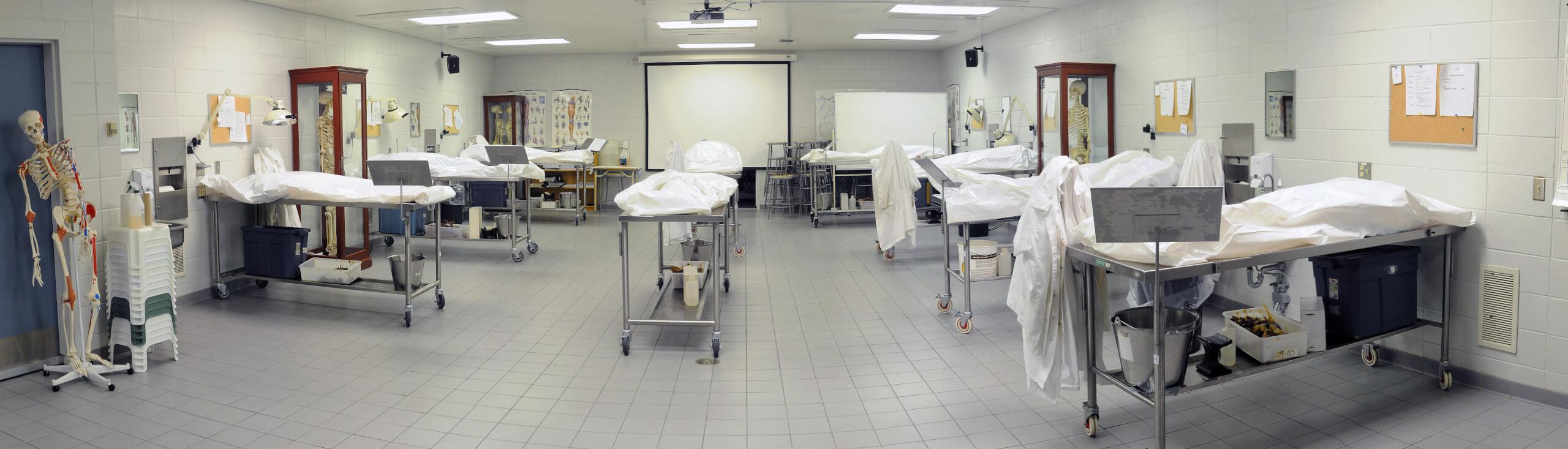 Le Laboratoire d'anatomie humaine de l'UQTR : lieu unique de formation et de recherche