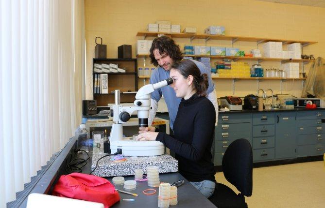 Contrôler la prolifération des cellules souches pour vaincre le cancer