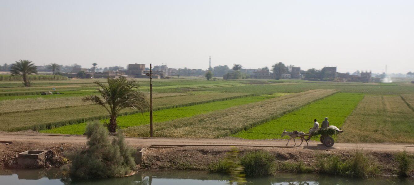 La part des acteurs locaux dans leur propre développement en Afrique subsaharienne