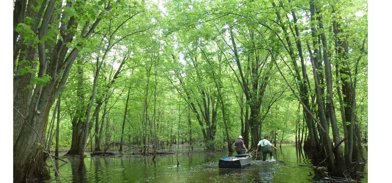 Trouver des solutions pour concilier agriculture et protection du lac Saint-Pierre