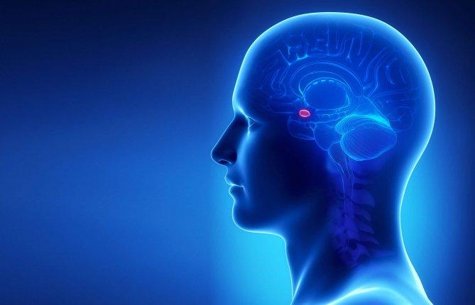 Utiliser le code génétique pour soulager la douleur chronique