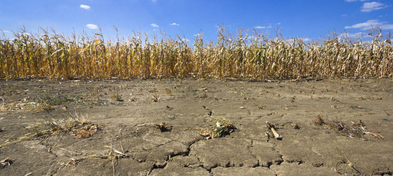 La sécheresse sera la principale menace sur les ressources en eau au Québec