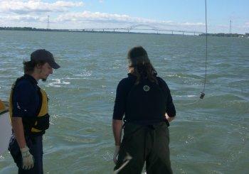 Des projets pour la Réserve de la biosphère du Lac-St-Pierre