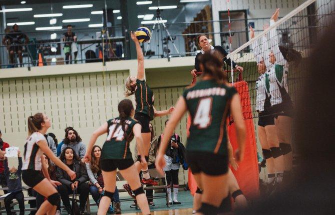 Le volleyball de retour en division 1!
