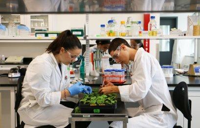 Chercheurs de demain: stimuler l'intérêt des jeunes pour la science