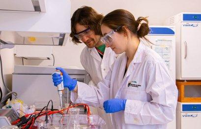 L'équipe de Patrick Narbonne utilise la piste des cellules souches pour comprendre le cancer