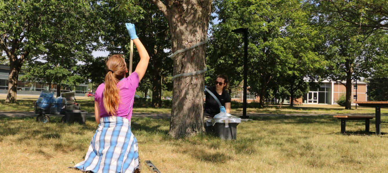 Collecteurs d'eau sur le campus: bien plus que de la pluie