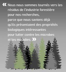citation-verticale_residus-forestiers-contre-maladies