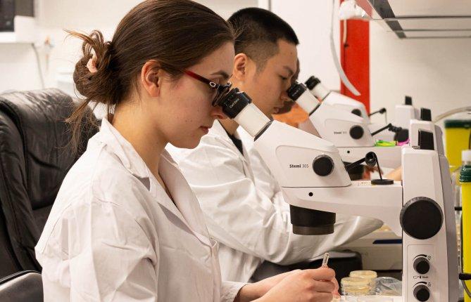 L'UQTR parmi les meilleures universités canadiennes pour l'augmentation de son financement de recherche