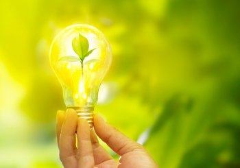 Des piles à combustible plus durables et moins coûteuses grâce aux résidus de l'industrie papetière